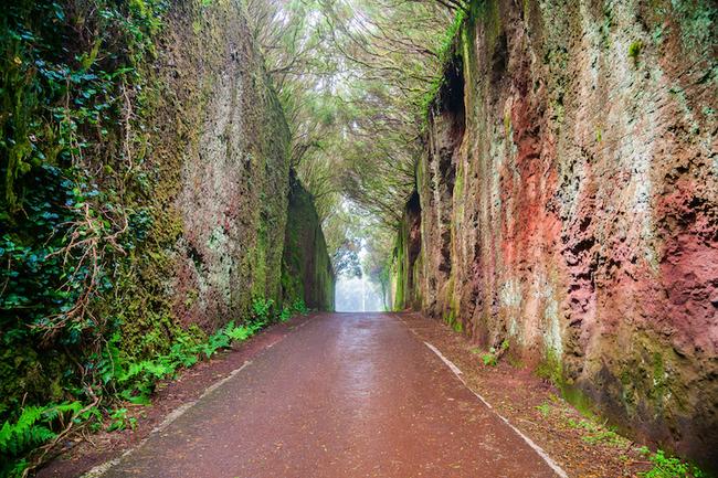 Ngắm nhìn 10 con đường tự nhiên đẹp nhất thế giới - Ảnh 5.