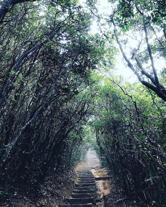 Ngắm nhìn 10 con đường tự nhiên đẹp nhất thế giới - Ảnh 11.