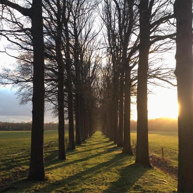 Ngắm nhìn 10 con đường tự nhiên đẹp nhất thế giới - Ảnh 13.