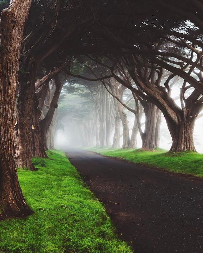 Ngắm nhìn 10 con đường tự nhiên đẹp nhất thế giới - Ảnh 17.