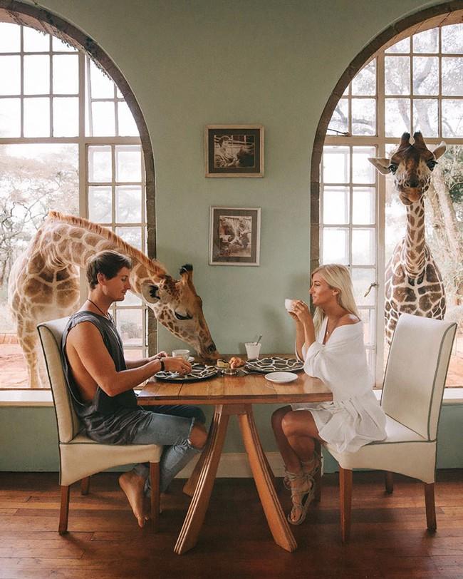 Chỉ đi du lịch thôi mà cặp đôi này cũng kiếm được hơn 200 triệu cho mỗi bức ảnh trên Instagram - Ảnh 1.