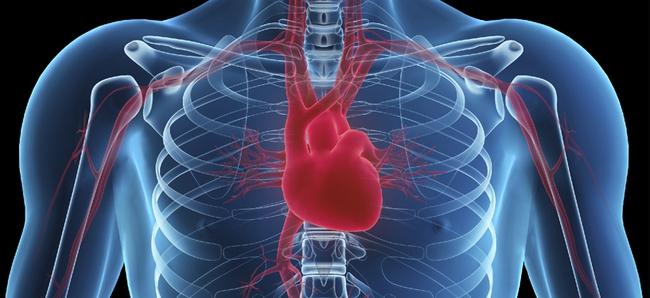 Hỏi khó: Liệu trên đời có căn bệnh nào mang tên Ung thư tim? - Ảnh 4.