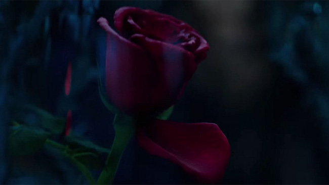 """""""Tam sao thất bản"""" giữa """"Beauty and the Beast"""" cổ tích, người đóng và hoạt hình - Ảnh 2."""