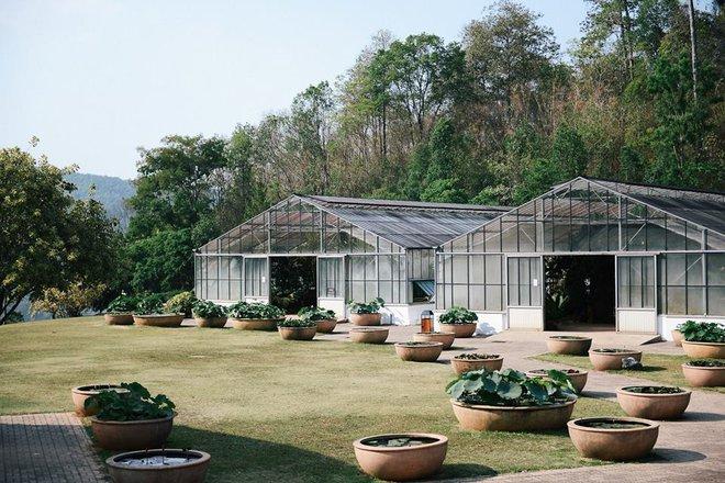 10 địa điểm tuyệt đẹp sẽ khiến bạn yêu Chiang Mai ngay từ cái nhìn đầu tiên - Ảnh 4.