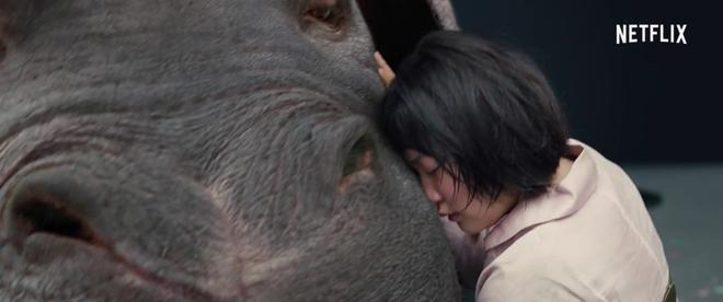 Chết ngất với quái vật siêu đáng yêu lai giữa lợn và hà mã từ bom tấn Okja - Ảnh 7.
