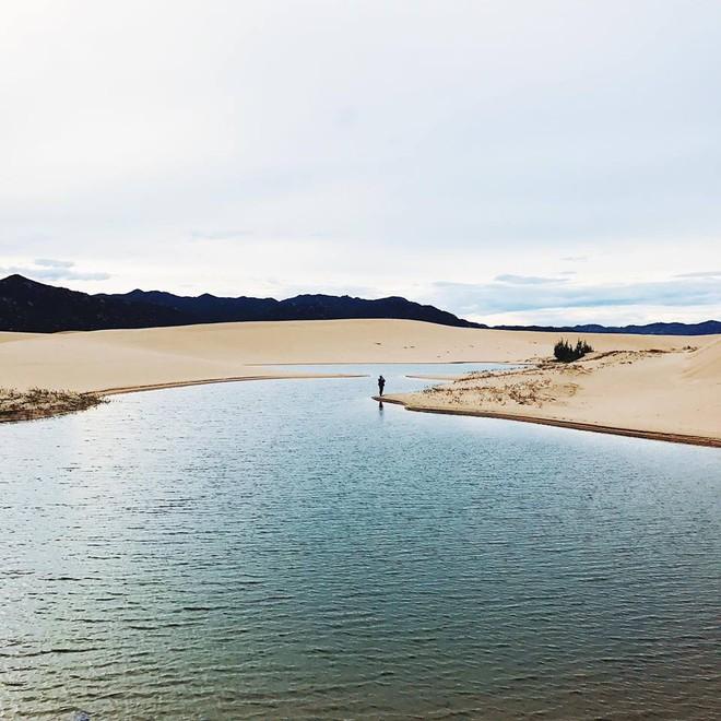 Ngẩn ngơ trước 5 đồi cát đẹp mê hồn ở miền Trung, nhìn thôi đã yêu luôn rồi - Ảnh 47.