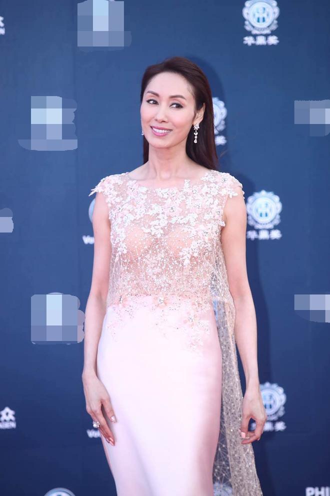Thảm đỏ Hoa Đỉnh 2017: Chân gầy khẳng khiu, Đường Yên vẫn cân dàn mỹ nhân Cbiz nhờ nhan sắc ngọt ngào - Ảnh 15.