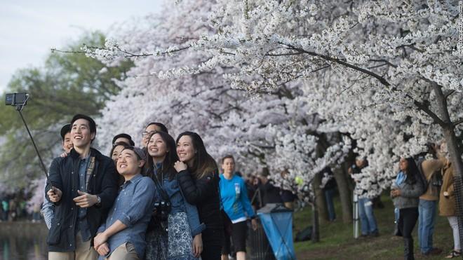 20 phát minh tuyệt vời của Nhật Bản đã thực sự thay đổi thế giới - Ảnh 1.