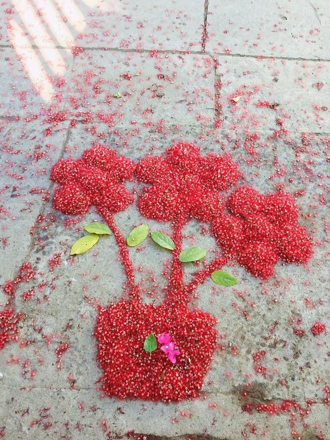 Đến cả quét hoa rơi trên đường bây giờ cũng phải có nghệ thuật như thế này đây! 6