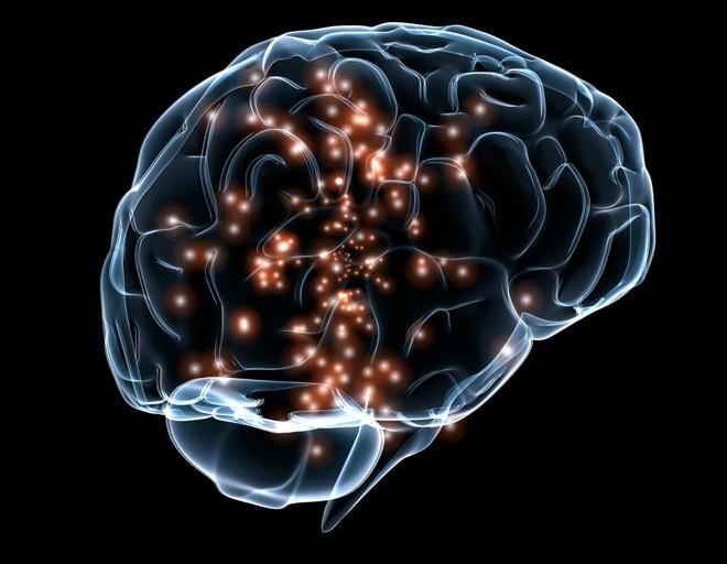 Bạn sẽ sốc khi biết não mình trữ được bao nhiêu cuốn sách - Ảnh 1.