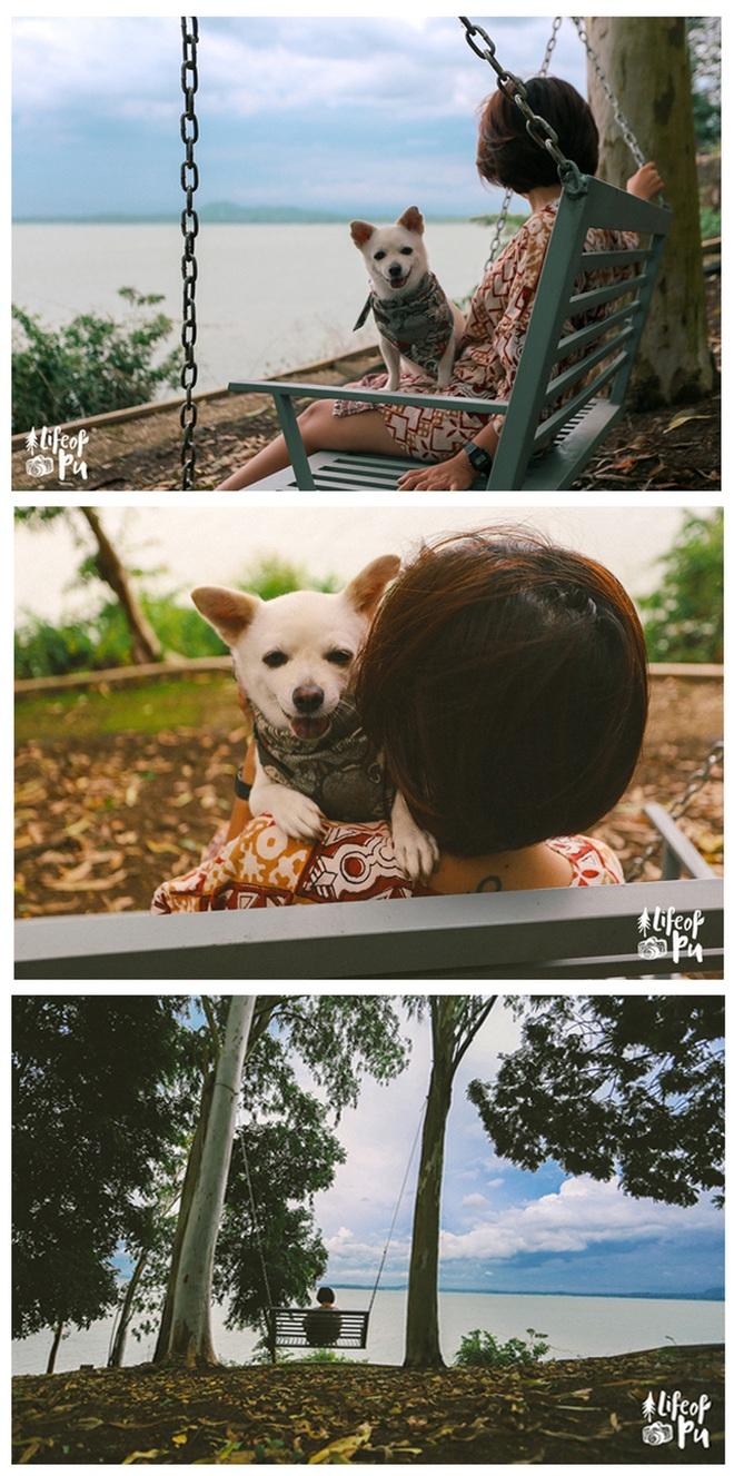Chuyến đi đầu tiên trong đời của một chú chó - hành trình đáng yêu khiến bạn chỉ muốn dắt cún đi du lịch ngay và luôn! - Ảnh 1.