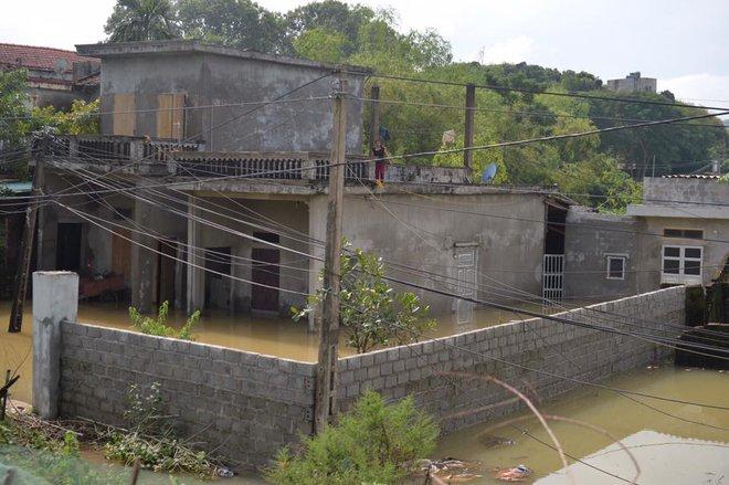 Chùm ảnh: Ninh Bình nhiều nơi nước ngập quá 2m, đường vào khu du lịch Bái Đính bị cô lập - Ảnh 14.