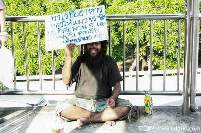 Sống lang bạt khắp nơi, nhưng người đàn ông vô gia cư vẫn nhịn đói đi bán chanh để kiếm tiền nuôi lũ mèo hoang 3