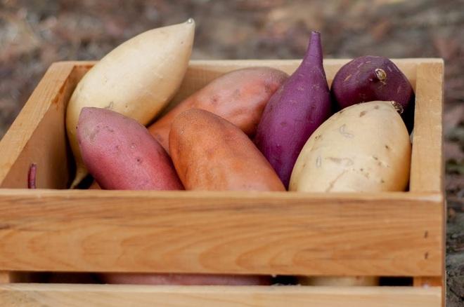 Thiếu vitamin A rất hại sức khỏe, sau cà rốt thì có những thực phẩm nào cũng giàu vitamin A? - Ảnh 2.