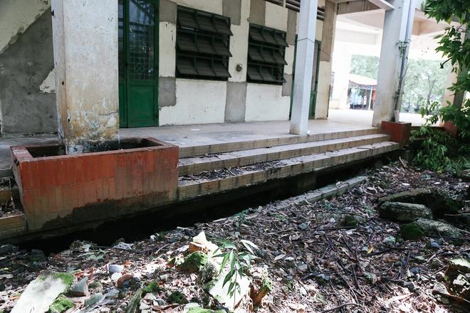 Cảnh u ám bên trong ngôi trường tiểu học 20 tỷ đồng bị bỏ hoang gần 10 năm giữa Sài Gòn - Ảnh 7.