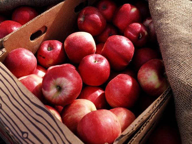 Người bị táo bón nhất định không nên bỏ qua 4 loại trái cây hữu ích này - Ảnh 3.
