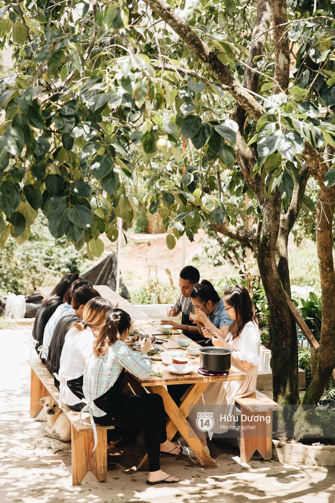 Có một nơi ở Đà Lạt người trẻ bỏ phố lên rừng làm bánh trà - xà phòng thơm, xây thanh xuân lộng lẫy cho riêng mình! - Ảnh 12.