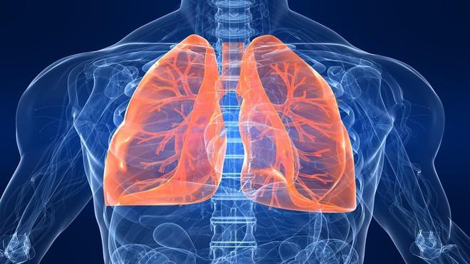 6 lợi ích không ngờ của hít thở sâu nếu biết rồi thì bạn sẽ không bao giờ bỏ qua - Ảnh 3.