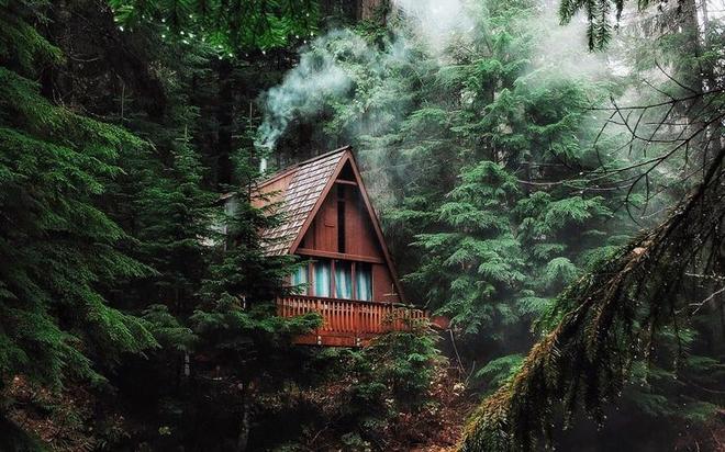 Tưởng tượng về ngôi nhà trong rừng sâu, giải mã tâm lý mỗi người - Ảnh 1.