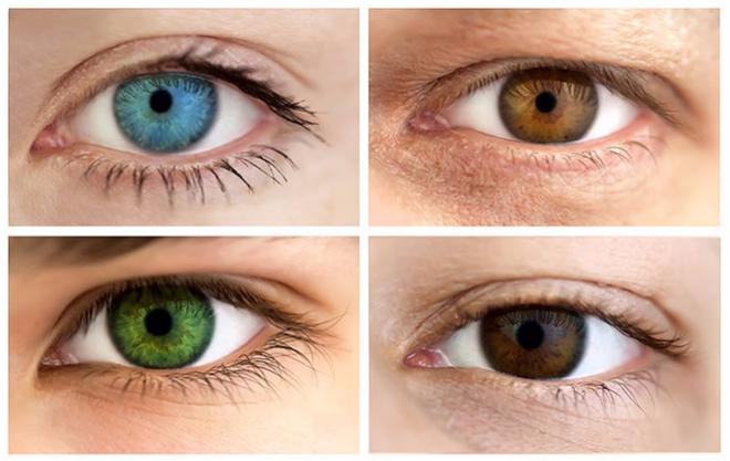 4 màu mắt cho biết điều gì quan trọng nhất trong cuộc sống của bạn - Ảnh 1.