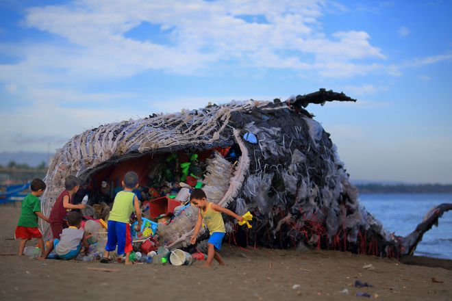 """""""Cá voi khổng lồ"""" nằm chết bên bãi biển, ai cũng sốc khi phát hiện ra thứ bên trong miệng nó - Ảnh 1"""