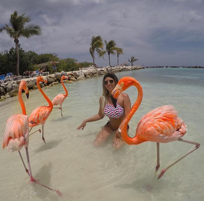 Nóng như thế này chỉ muốn đến ngay thiên đường Aruba tắm biển, thỏa thích chụp ảnh sống ảo cùng hồng hạc mà thôi! - Ảnh 11.