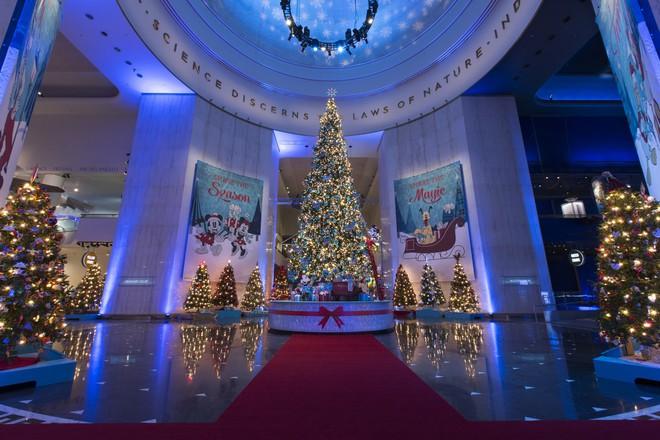 Khung cảnh đón Giáng sinh sớm ở nhiều nơi trên khắp thế giới: Lộng lẫy, nguy nga và ấm áp - ảnh 1