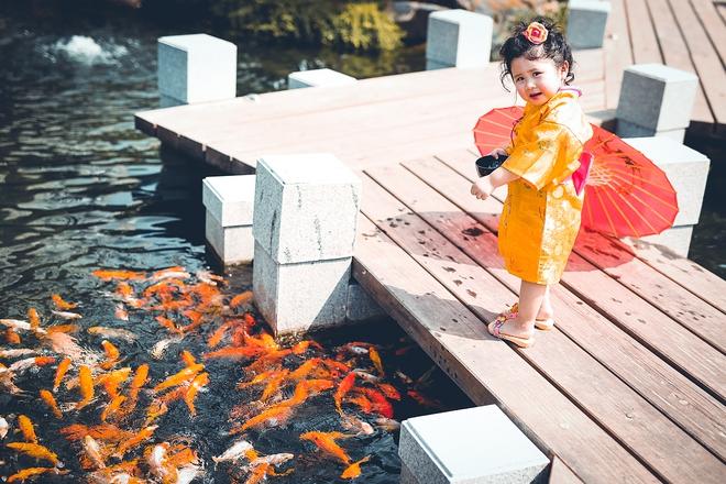 Tan chảy trước độ dễ thương của cô bé Việt 2 tuổi má phính diện Kimono, tóc tơ cài hoa - Ảnh 12.
