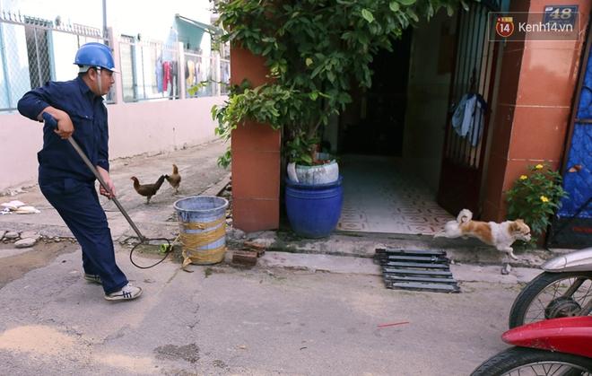 """Chó cưng bị Đội săn bắt """"tóm"""", cụ bà hớt hải: """"Nó đi chợ với tôi, đang nằm trên vỉa hè chờ tôi về cùng thì bị bắt"""" - Ảnh 3."""