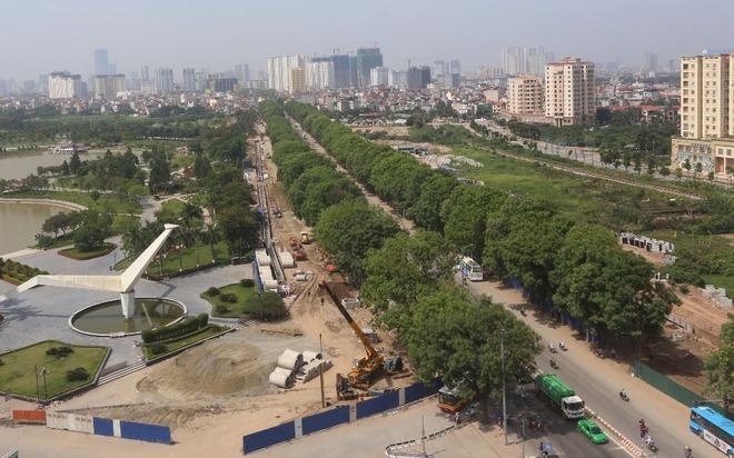Hà Nội: Nhìn lại 1.300 cây xanh trên đường Phạm Văn Đồng sẽ bị chặt hạ trong 3 tháng tới - Ảnh 1.