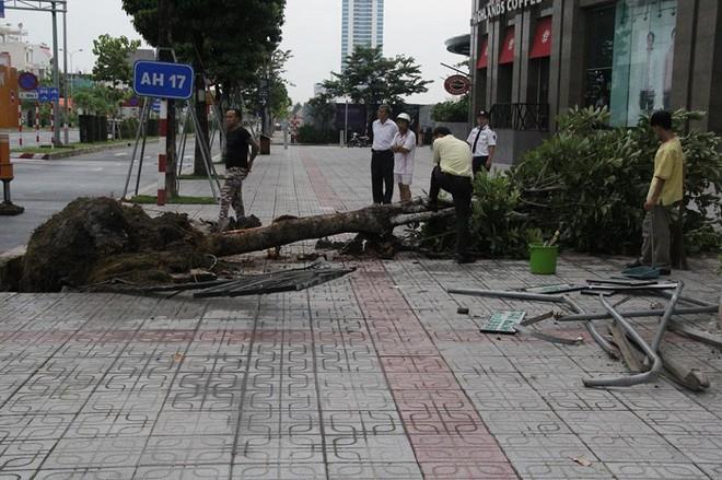 Đà Nẵng: Xe đầu kéo mất lái, thùng container văng xuống đường khiến nhiều người thót tim - Ảnh 2.