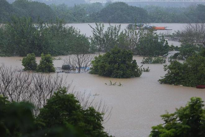 Nước sông Hồng dâng cao, nhiều hoa màu cùng nhà dân bị ngập, tàu thuyền không thể di chuyển qua cầu Long Biên - Ảnh 2.