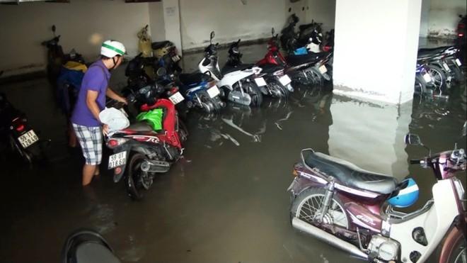 Nước nhấn chìm cả trăm xe máy, ô tô trong chung cư - ảnh 3
