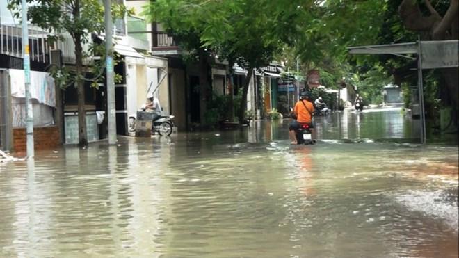 Nước nhấn chìm cả trăm xe máy, ô tô trong chung cư - ảnh 6