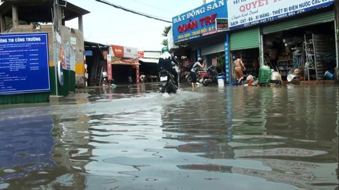 Nước nhấn chìm cả trăm xe máy, ô tô trong chung cư - ảnh 8