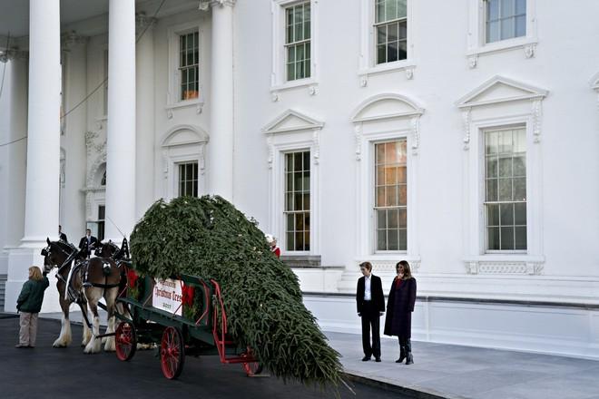 Khung cảnh đón Giáng sinh sớm ở nhiều nơi trên khắp thế giới: Lộng lẫy, nguy nga và ấm áp - ảnh 13