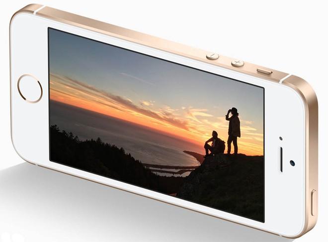 Quên iPhone X đi, đây là những lý do iPhone SE đang là smartphone đáng tiền nhất của Apple - Ảnh 3.