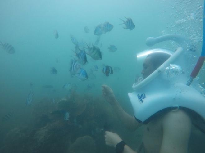 5 trải nghiệm du lịch tại Việt Nam mà nhất định bạn phải thử trước khi mùa hè trôi qua - Ảnh 7.