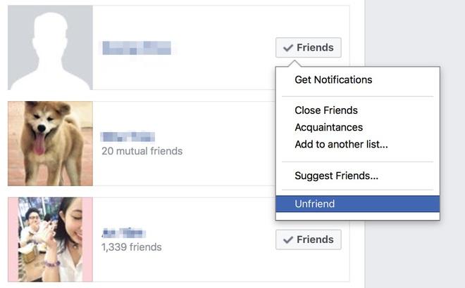 Quá nhiều bạn bè trên Facebook ư? Sau đây là các cách thức dọn dẹp danh sách bạn bè hiệu quả nhất - Ảnh 5.