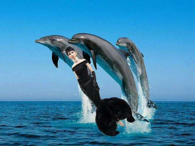 Hình ảnh Thùy Dương Next Top hoá thân thành Audrey Hepburn được chế thành loạt ảnh siêu buồn cười - ảnh 3