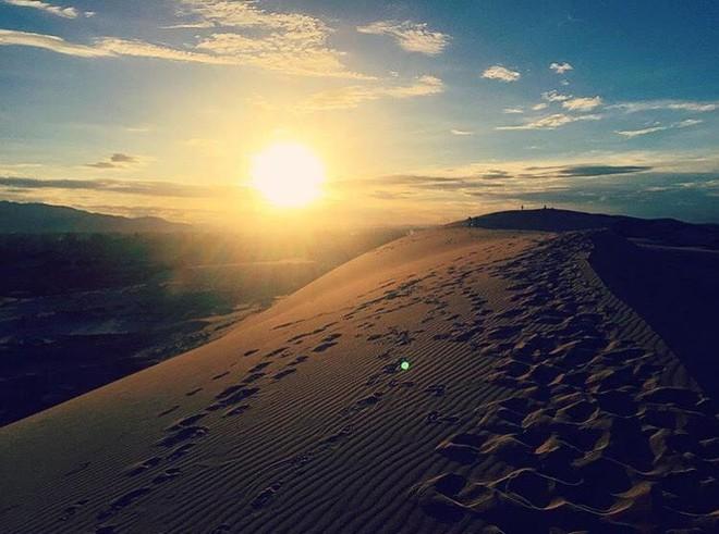 Ngẩn ngơ trước 5 đồi cát đẹp mê hồn ở miền Trung, nhìn thôi đã yêu luôn rồi - Ảnh 39.