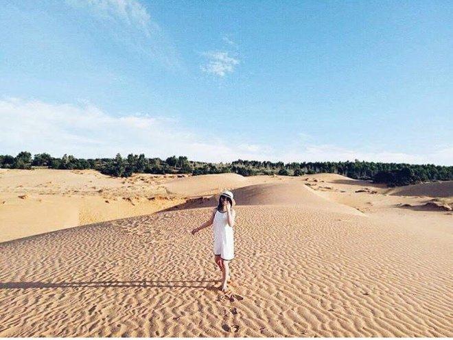 Ngẩn ngơ trước 5 đồi cát đẹp mê hồn ở miền Trung, nhìn thôi đã yêu luôn rồi - Ảnh 6.