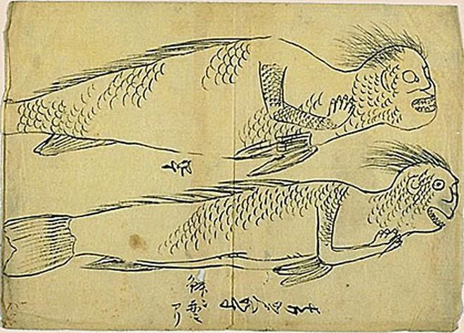 Bí ẩn thế giới: Sự thật xoay quanh câu chuyện về Người Cá và những truyền thuyết ít người biết tới (P2) - ảnh 2