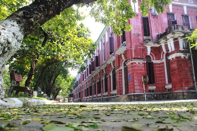 Ở miền Trung có 1 ngôi trường cấp 3 kiến trúc đẹp như châu Âu, đứng vào góc nào cũng ra ảnh nghìn like - ảnh 13