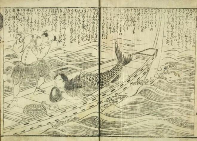 Bí ẩn thế giới: Sự thật xoay quanh câu chuyện về Người Cá và những truyền thuyết ít người biết tới (P2) - ảnh 7
