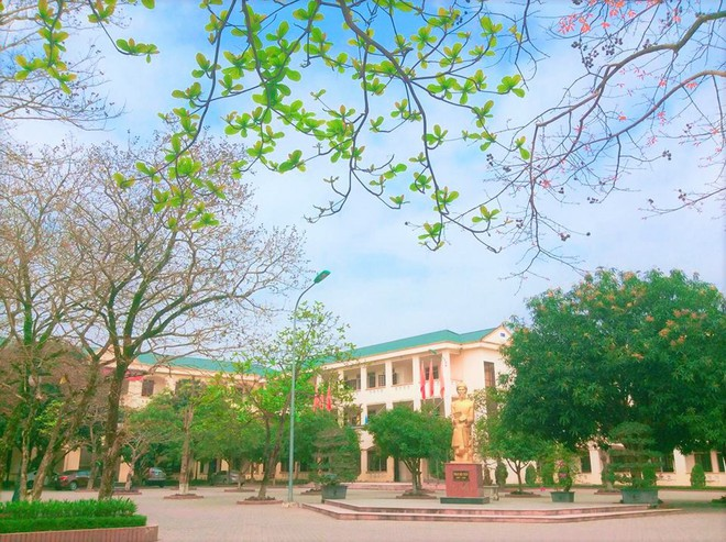 Những ngôi trường cấp 3 siêu giỏi ở miền Trung: Trường toàn HCV Olympic Quốc tế, trường có rất nhiều thủ khoa đại học - Ảnh 1.