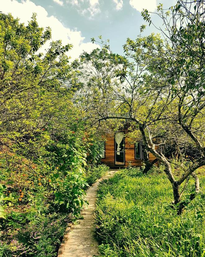 3 homestay không đi không được cho những ngày tránh gió mùa ở Mộc Châu - ảnh 15