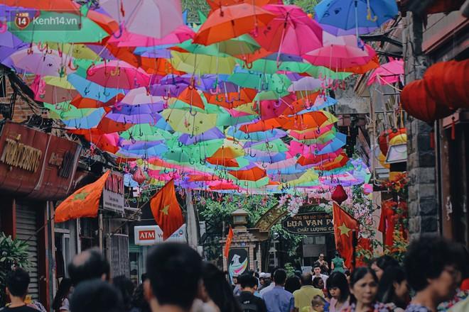 Hà Nội xuất hiện con đường ô lãng mạn như ở Bồ Đào Nha, người dân ùn ùn kéo đến chụp ảnh - Ảnh 3.