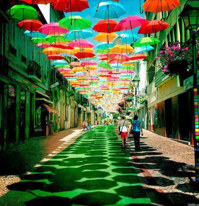 Hà Nội xuất hiện con đường ô lãng mạn như ở Bồ Đào Nha, người dân ùn ùn kéo đến chụp ảnh - Ảnh 1.