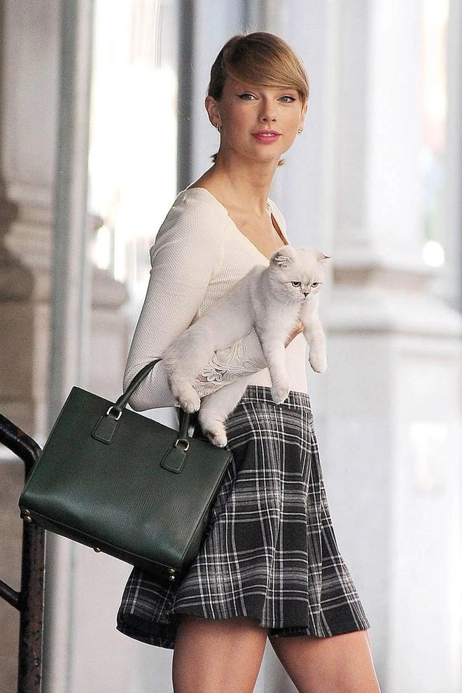 """Danh sách """"rich pet"""" giàu có nhất thế giới: Sở hữu tài sản hàng trăm triệu đô, ăn đứt cả sao Hollywood - ảnh 3"""